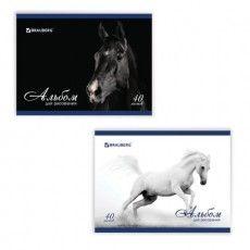 """Альбом для рисования, А4, 40 листов, скоба, обложка картон, BRAUBERG, 200х283 мм, """"Благородные кони"""" (2 вида), 103728"""