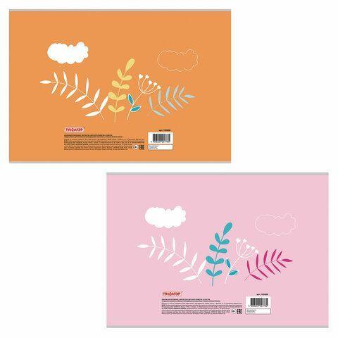 """Альбом для рисования А4 20 л., скоба, обложка офсет, ПИФАГОР, 200х285 мм, """"Веселый мышонок"""" (2 вида), 105606"""