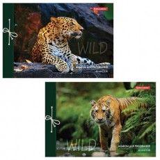 "Альбом для рисования А4 40 л., на завязках, обложка картон, BRAUBERG, 200х285 мм, ""Дикие кошки"" (2 вида), 105615"