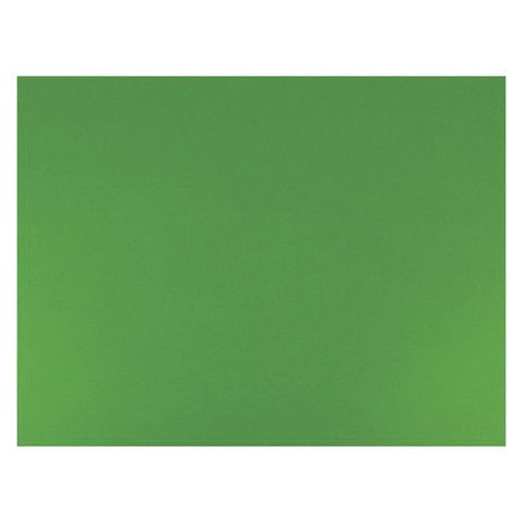 "Бумага (картон) для творчества (1 лист) SADIPAL ""Sirio"" А2+ (500х650 мм), 240 г/м2, зеленый мох, 7877"