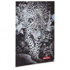 """Папка-уголок BRAUBERG """"LEOPARD"""", А4, 150 мкм, цветная печать, 228040"""