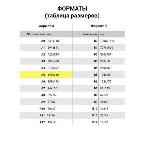 Тетрадь на кольцах А5 (140х205 мм), 90 л., обложка ПВХ, клетка, ДПС, синяя, 2419-101