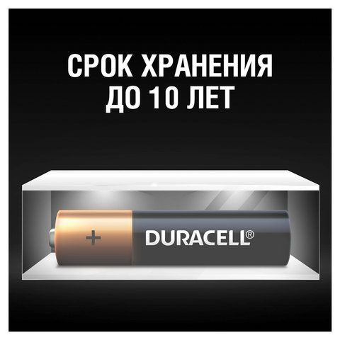 Батарейки КОМПЛЕКТ 2 шт., DURACELL Basic, AAA (LR03, 24А), алкалиновые, мизинчиковые, блистер